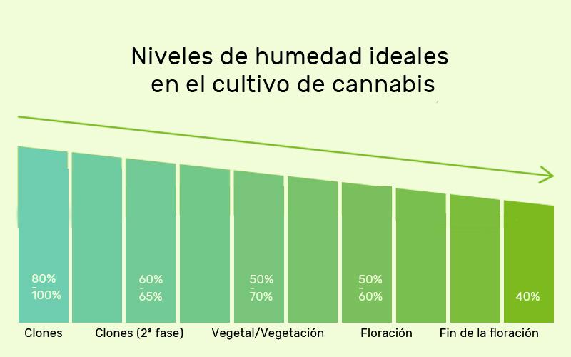 levels-humidity-cannabis