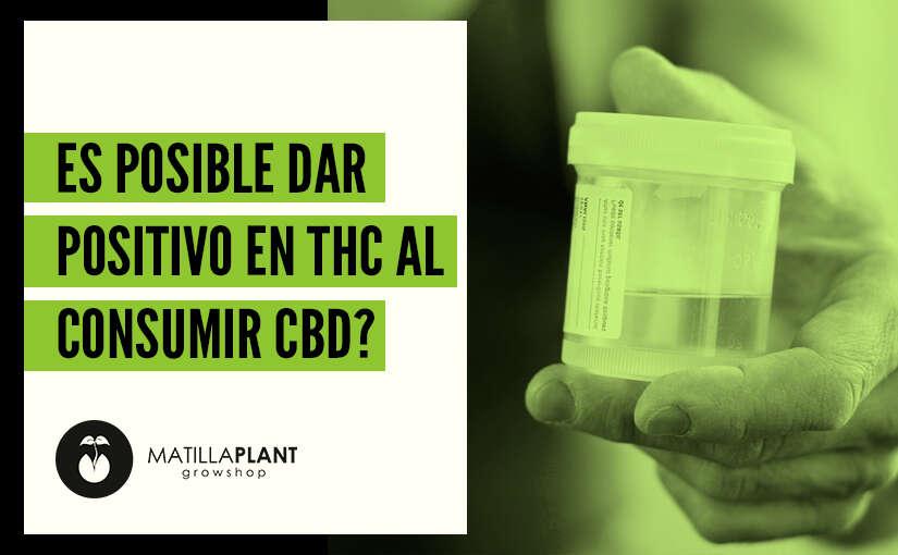 ¿Es posible dar positivo en THC habiendo consumido CBD?