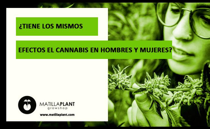 ¿Tiene los mismos efectos el cannabis en hombres y mujeres?