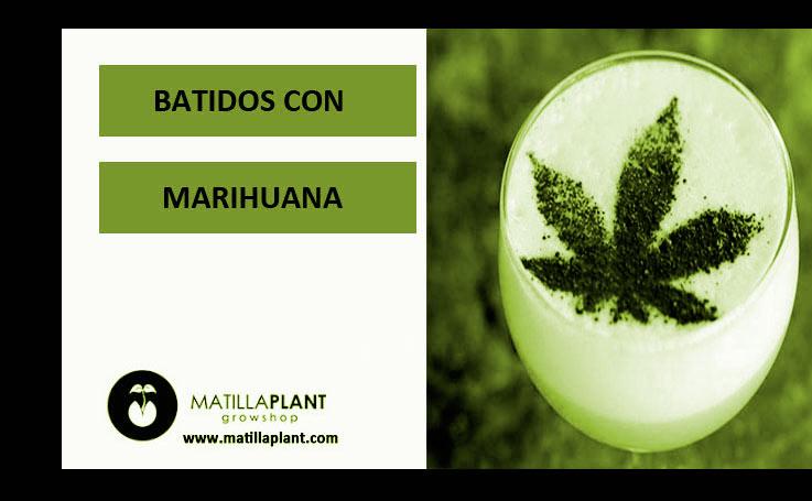 Batidos con marihuana