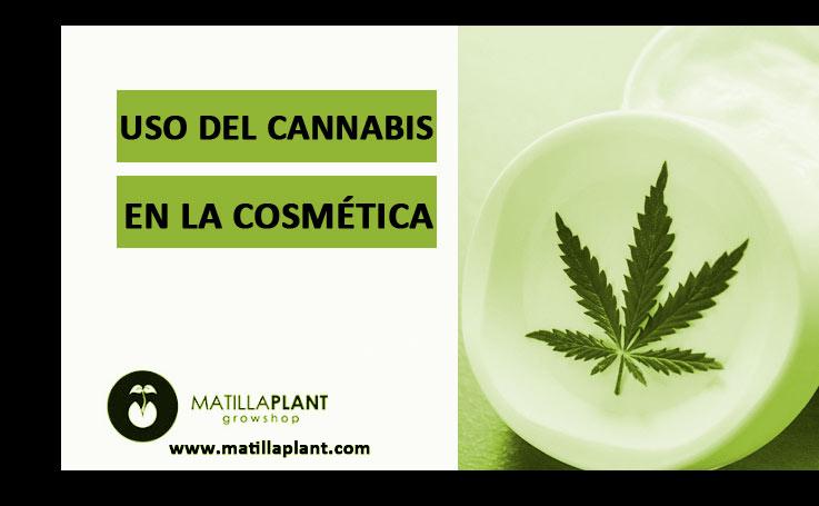 Uso del cannabis en la cosmética