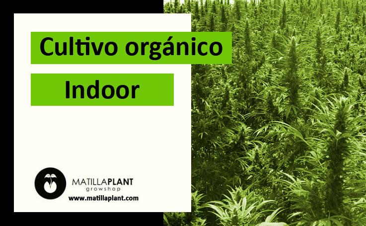 Cultivo orgánico indoor